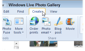 Choose Create from Windows Live Photo Gallery's top menu.