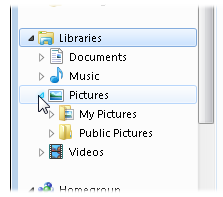 The Pictures Library displays the contents of two folders: your My Pictures folder, and the Public Pictures folder, used to share photos between everybody using that PC.